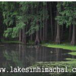 Karali Lake
