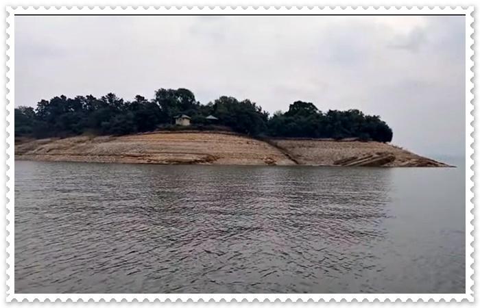 Pong Dam Himachal Pradesh